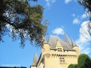 Saint-Leon-sur-Vezere-Chateau-de-Clerans
