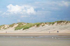 Dunes-de-Flandre-Nord-Koksijde_Duin_02