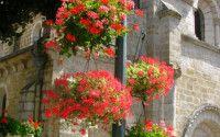 Caniac du Causse – Causse de Gramat – Quercy