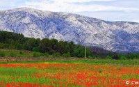 Aix-en-Provence – Cezanne's Hometown – Calissons