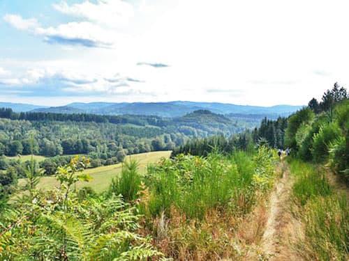 Plateau de Millevaches - Haute Vallée de la Vienne