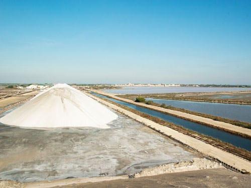 Aigues-Mortes salt marshes