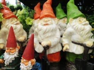 Garden-gnomes-nains-de-jardin-in-garden-center