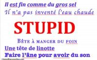 How to say Stupid in colloquial French language
