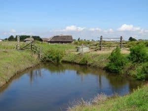Ecomuseum Marais Vendeen - Traditional landscape of the marsh