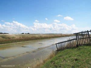 Ecomuseum Marais Vendeen - salt marsh