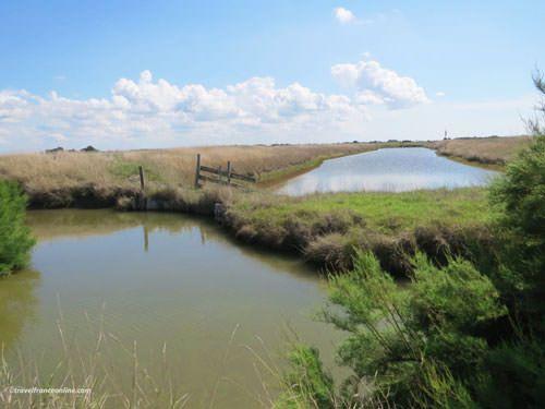 Marais Breton-Vendeen - Canals locally called etriers