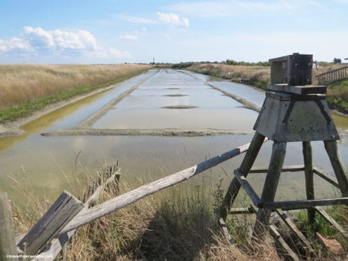 Marais Breton-Vendeen - Salt marsh