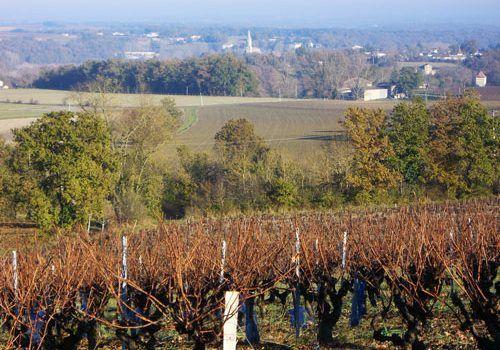 Gaillac-Wine-Cahuzac-in-winter-017