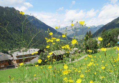 Haute-Savoie-in-Rhone-Alpes
