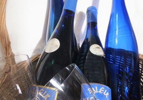 Pays-Nantais-Vineyard-Muscadet-Bleu