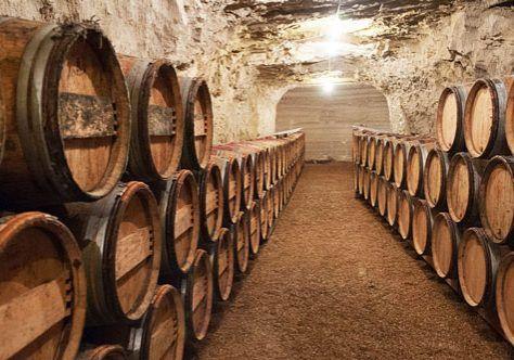 Touraine-Vineyard-Chinon-wine-cellar-Bernard_Baudry_(8807309830)